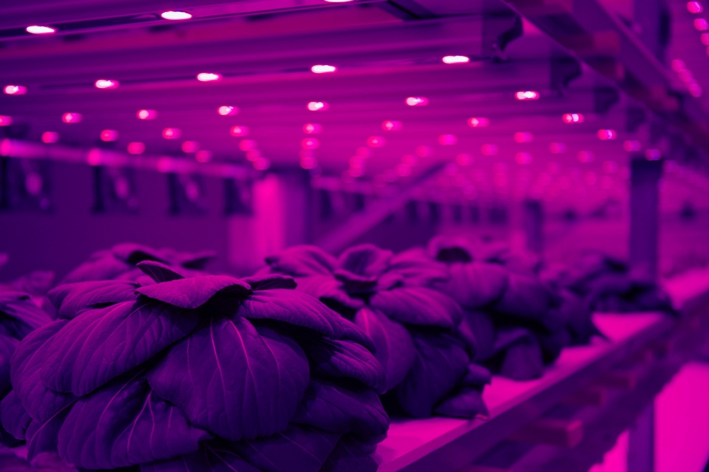 Basel startup aims to change agriculture sector