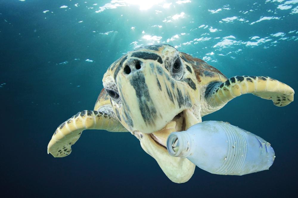 Tide Ocean turns ocean plastic waste into watches